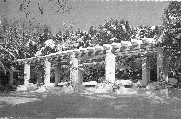 Ola de frío de 1956_14