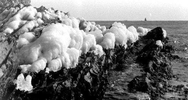 Ola de frío de 1956_10