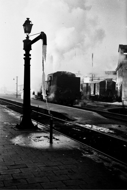 Ola de frío de 1956_6